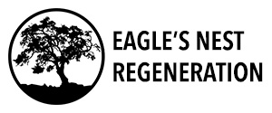 Eagle's Nest Regeneration